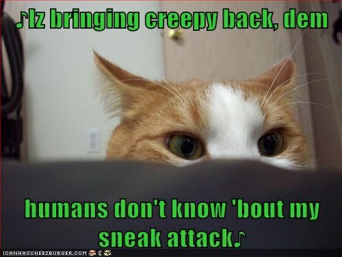 Catch the Awesome Funny Creepy Cat Memes