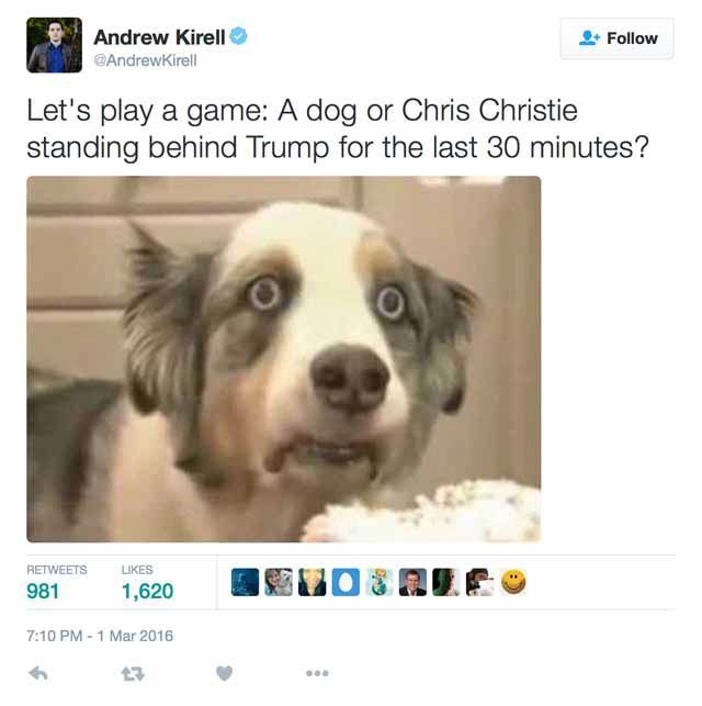 chris christie dog 56d767bf3df78cfb37db397e