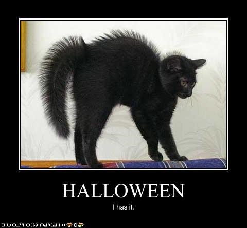 costume scary halloween i has it black cat