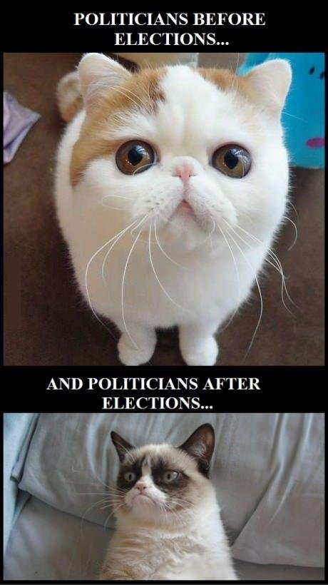 Politicians Before and After