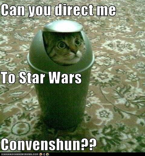 funny pictures cats classic star wars cat1