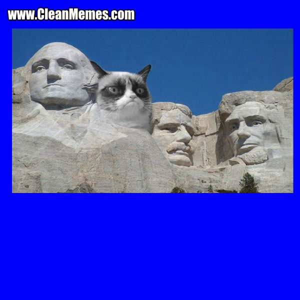 Author cleanmemesPosted on March 5 2015 Format ImageCategories Cat Memes Clean Funny Clean MemesTags Cat Memes Clean Funny