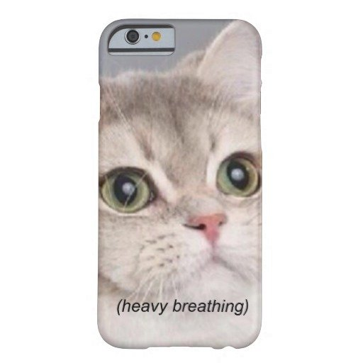 Heavy Breathing Cat iPhone 6 Cat Heavy Breathing Funny