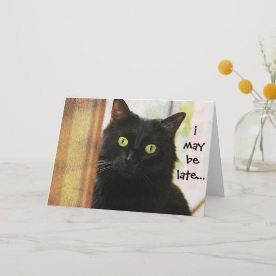 Funny Cat Belated Birthday Card I didn t fur
