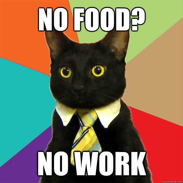NO WORK NO FOOD NO WORK Business Cat