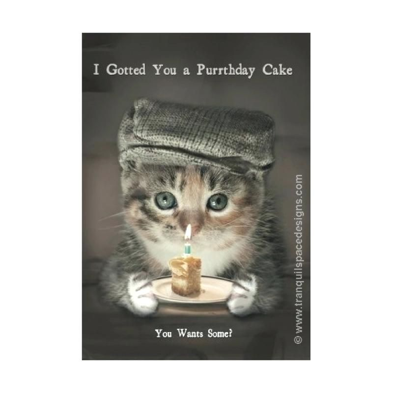 Cat This Design Birthday Cards