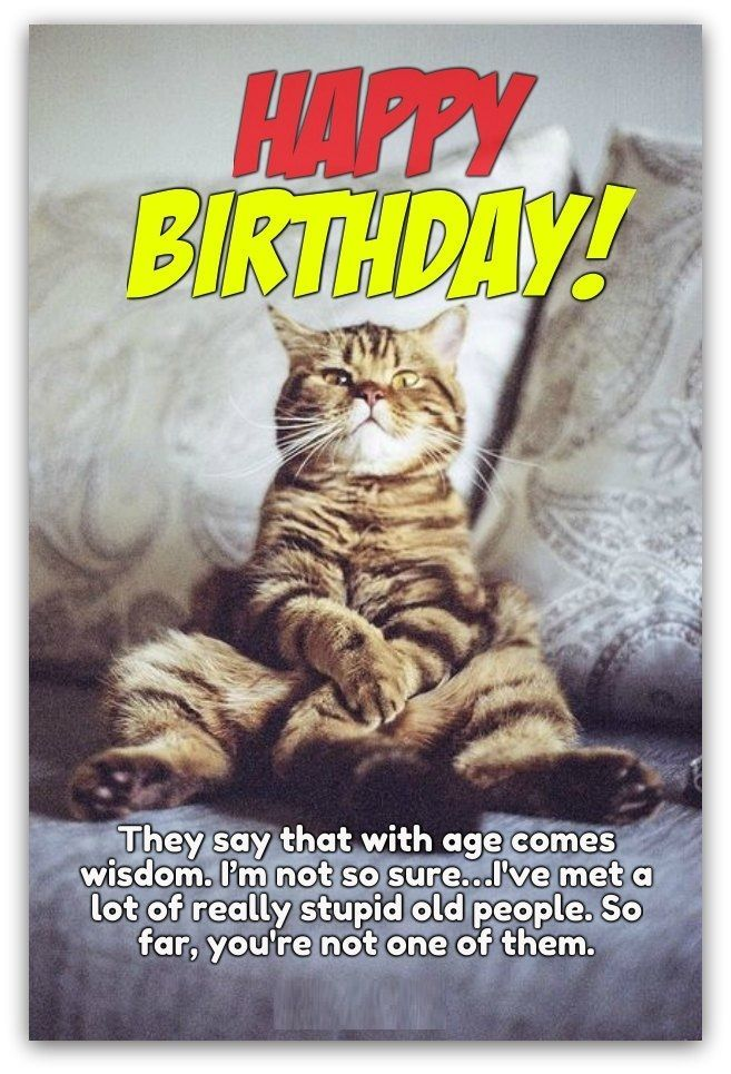27 Very Funny Birthday Quotes For Boys And Girls