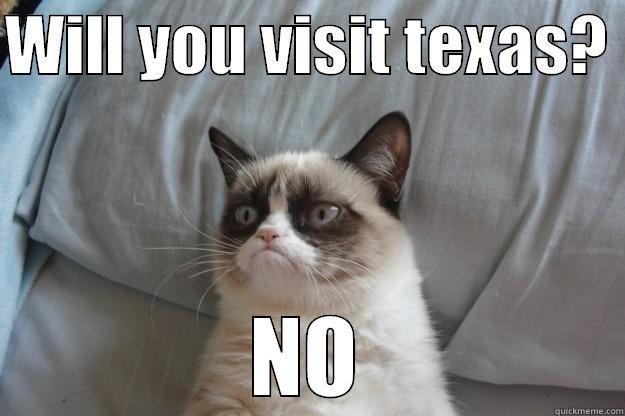 Visiting Texas WILL YOU VISIT TEXAS NO Grumpy Cat