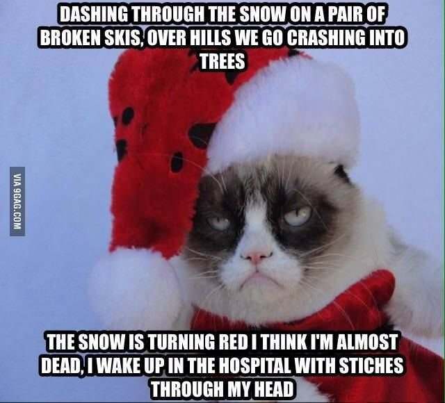 """Me Merry Christmas Grumpy Cat Grumpy Cat What""""s so merry about it"""