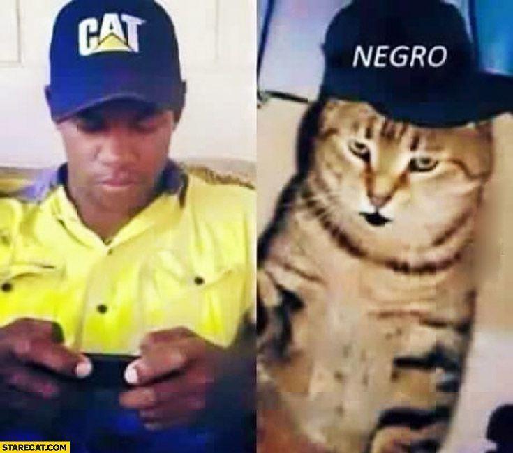 Guy wearing cat hat cat wearing negro hat
