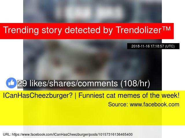 Funniest cat memes of the week