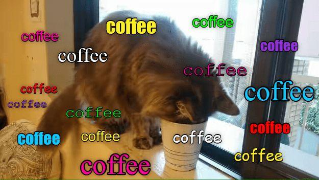 cat coffee caption