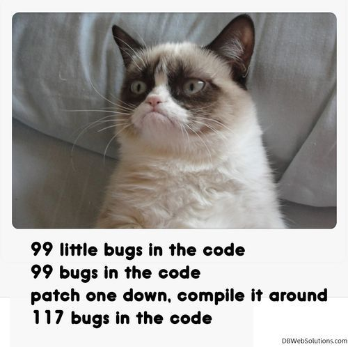 Catch the Suprising Funny Pictures Coding Cat