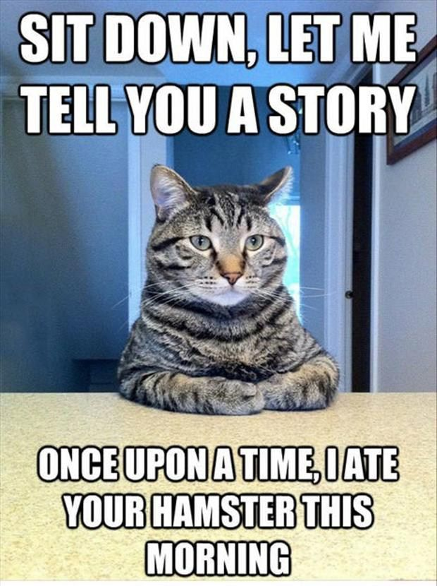 Animal Quotes Sit down let me tell you a story once upon a time i ate your hamster this morning