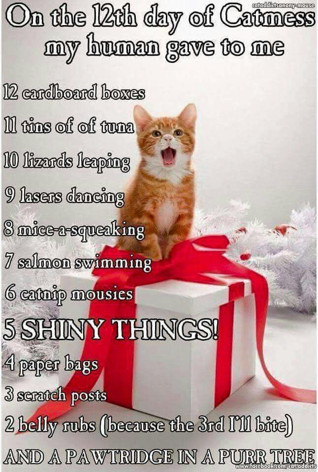 12 days od Kittymas