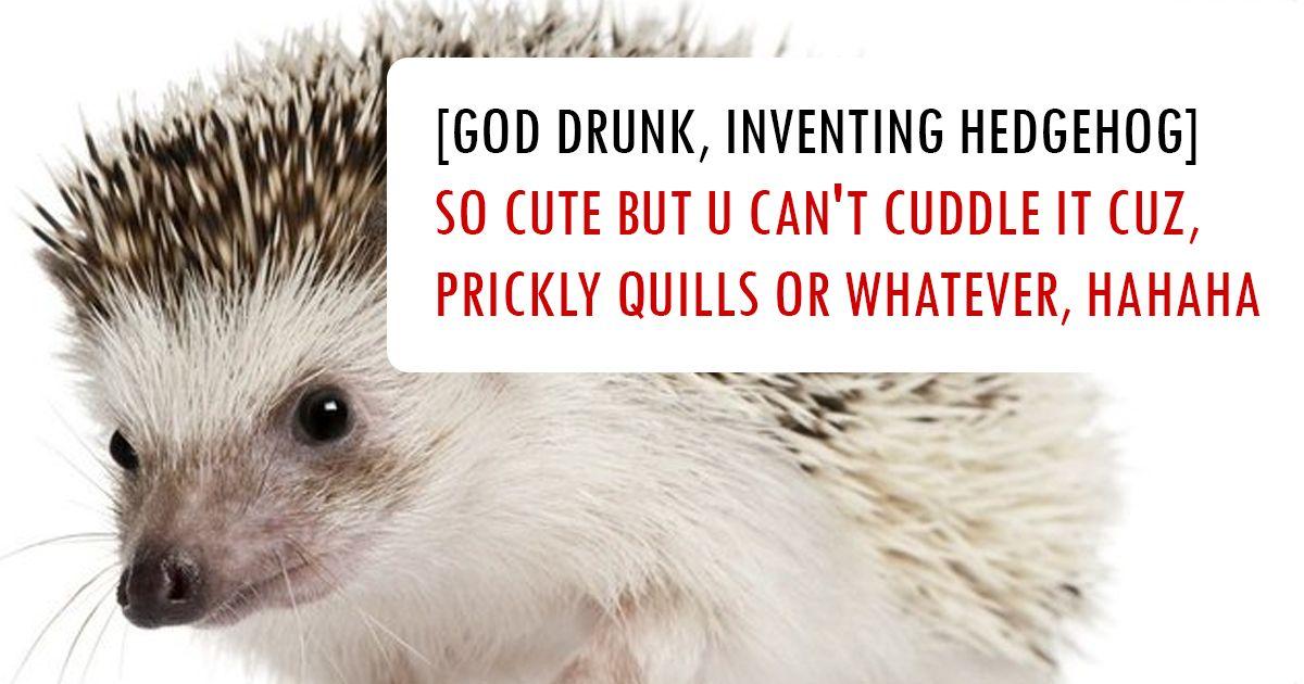 how animals were created god funny animal tweets fb