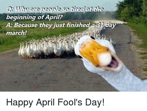 Memes Happy and April Fools Q are beginning of April A