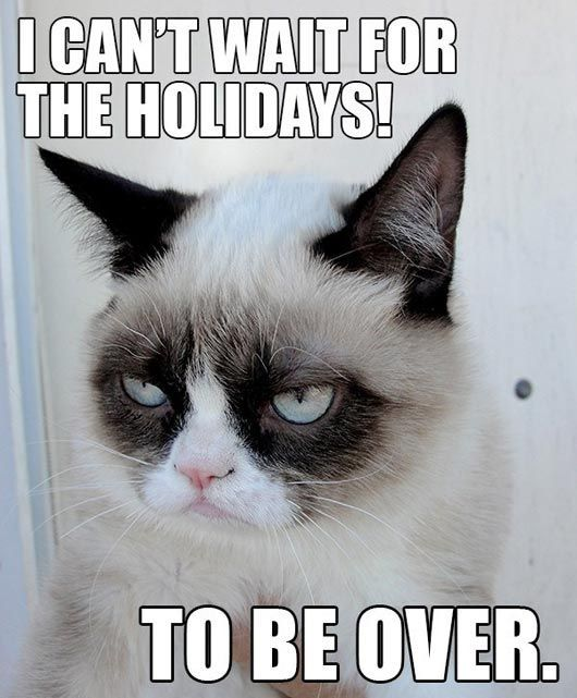 Grumpy cat meme I can t wait for the holidays to be over