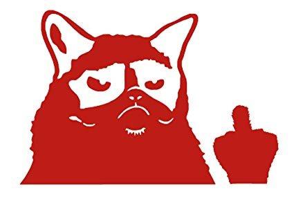 "Grumpy Cat Meme Flippin You f Sticker Vinyl Decal CHOOSE COLOR 5"""