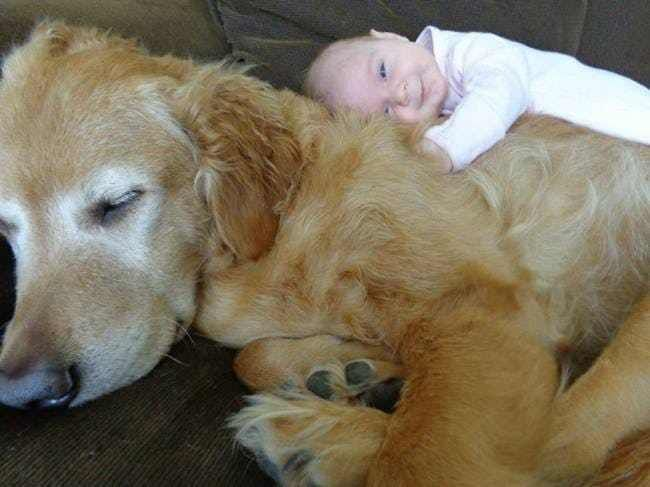 This Baby Who Is the Big Spoon
