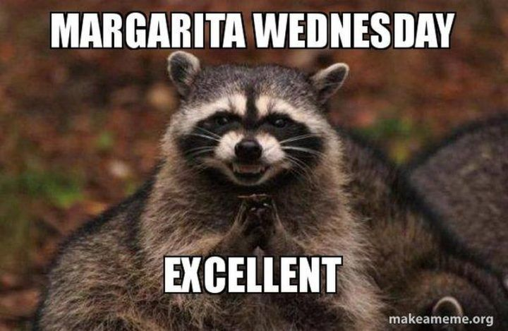 funny Wednesday memes Wednesday margaritas smile