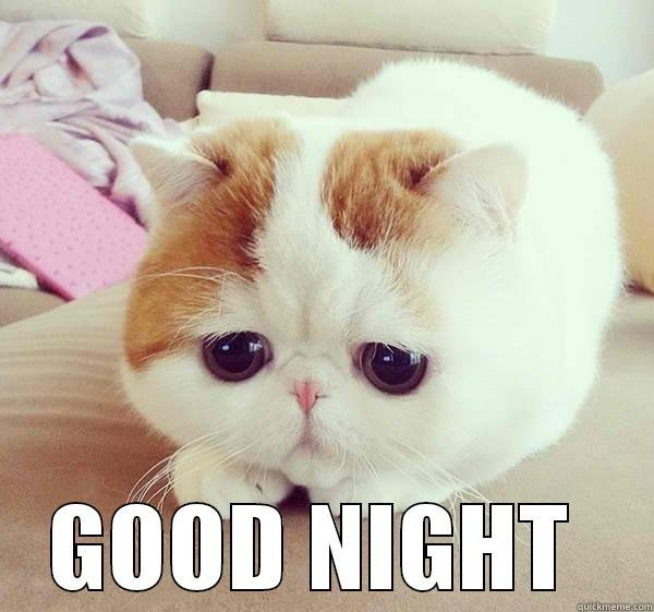 Cutie Nightie Cat GOOD NIGHT Misc