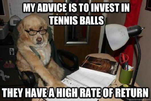 """""""My advice is to invest in tennis balls They have a high rate of return """" The Family Dog"""