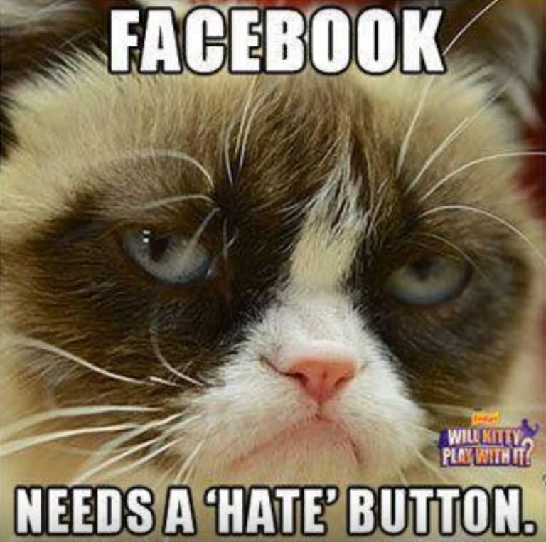Needs A Hate Button Funny Grumpy Cat Meme Picture