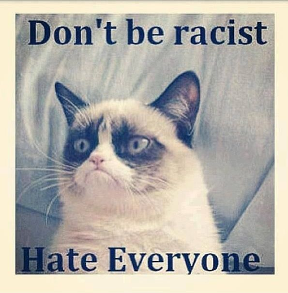 funny pictures grumpy cat dont be a racist