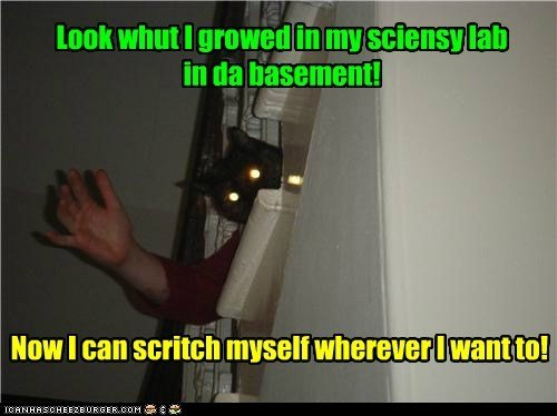 basement cat mutant school science funny