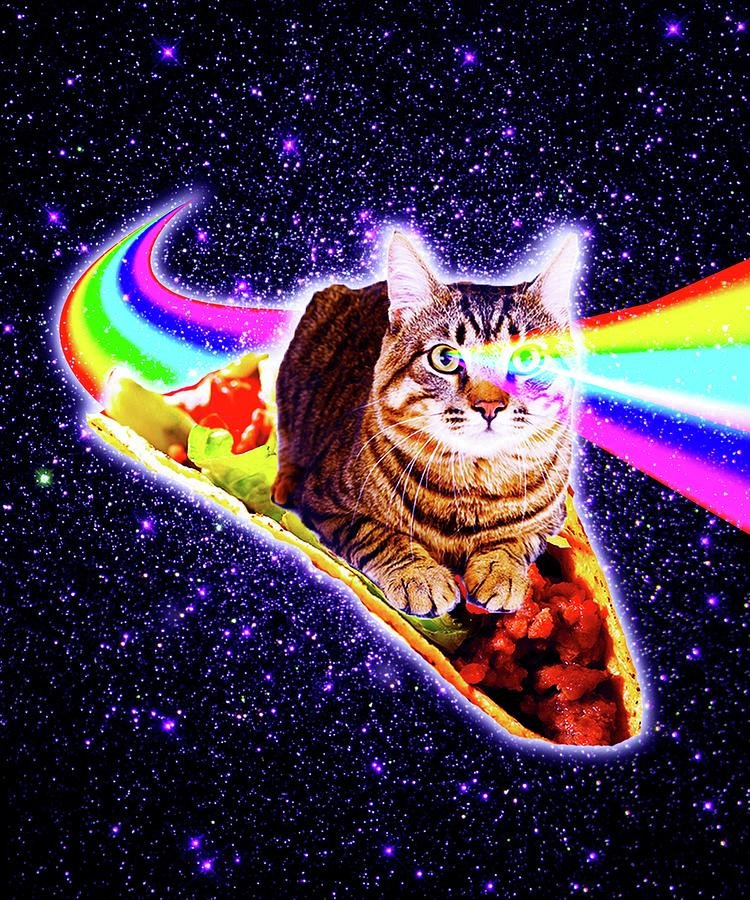 Collect the Lovely Funny Cat Pictures Laser Eyes