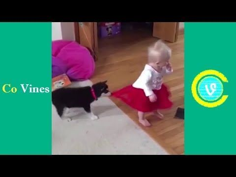 Funny Home Videos Viral Videos Funny Kid Fails Laugh Meme Funny Vines