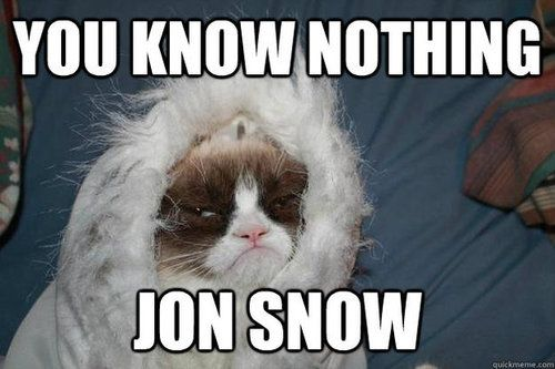 game of thrones jon snow and funny image