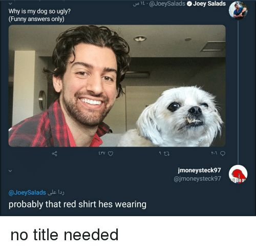 Funny Ugly and Answers E JoeySalads Joey Salads Why is my dog so ugly Funny answers only rv v jmoneysteck97 jmoneysteck97 O D JoeySalads le lsy