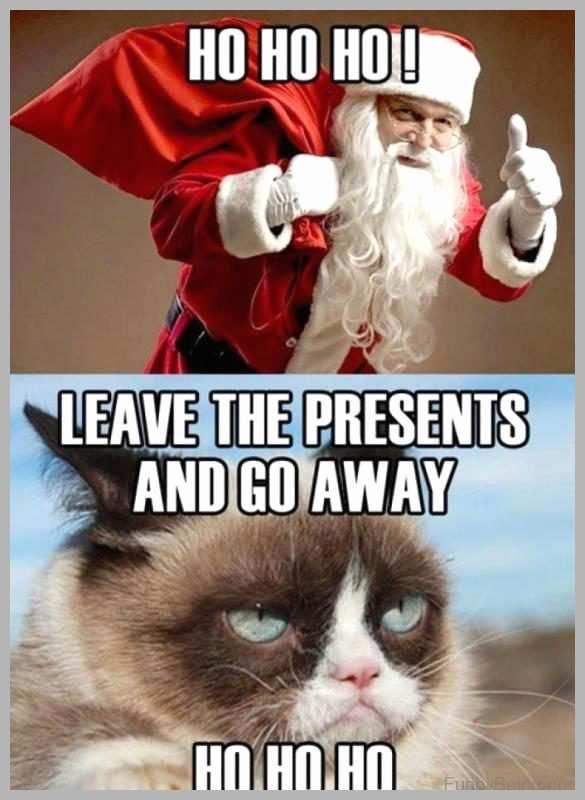 Christmas Cat Meme Inspirational 20 Super Funny Christmas Memes Volume 1 Christmas Cat Meme Inspirational