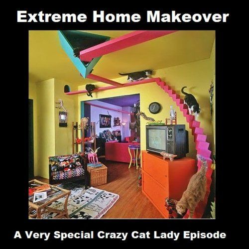 "11 Best Pics of the Crazy Cat Lady Meme These are so funny also should be pinned to my ""Dream Home"" board haha"