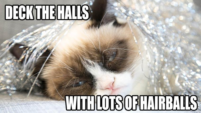 Deck The Halls With Lots Hairballs Funny Grumpy Cat Meme Image