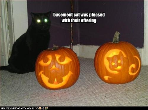 Okay you all know how much I love me some LOLCats Here s a few in honor of Halloween Enjoy