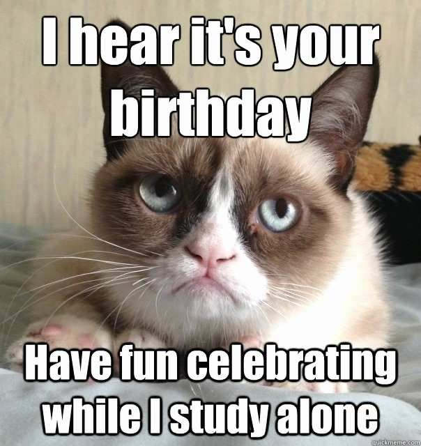 Crazy Cat Lady Birthday Meme Admirably the Gallery for Funny Cat Meme Birthday Crazy Cat