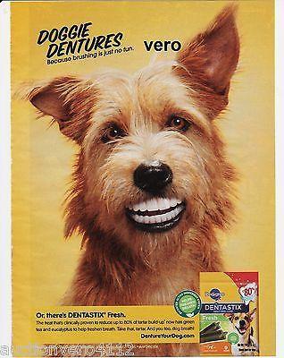 2013 Magazine Ad Pedigree Doggie Dentures Dog Teeth Advertisement Print Terrier