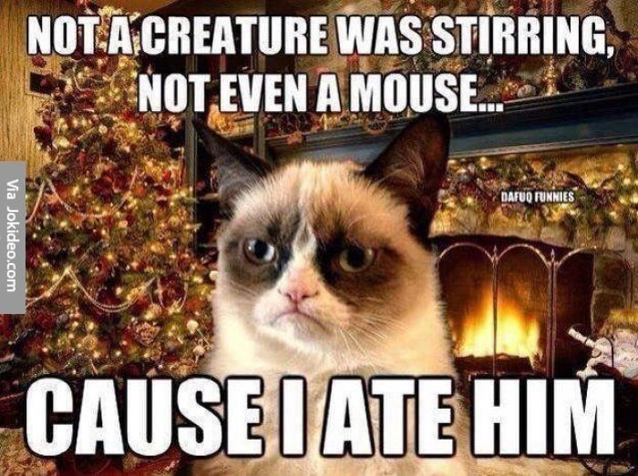 Funny christmas grumpy cat meme