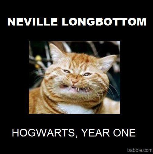 NevilleYoung
