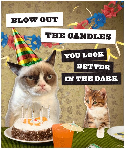 Happy 2nd birthday Grumpy Cat