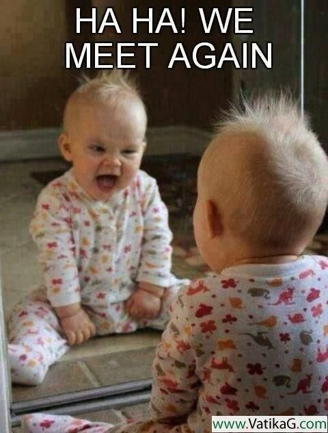 Download Haha we meet again Funny wallpapers for mobile