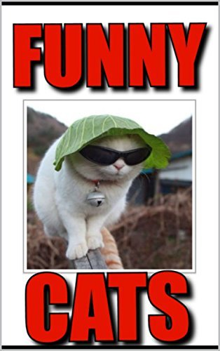 Memes Funny Cat Memes 2017 Meow Funny Memes Jokes Better Than Harry