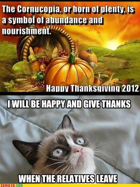 It Is Black Friday In My Soul Cats = = Grumpy Cat Pinterest