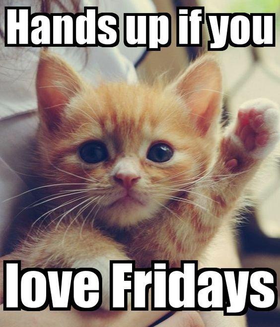 25 Funny Friday Memes Friday Memes