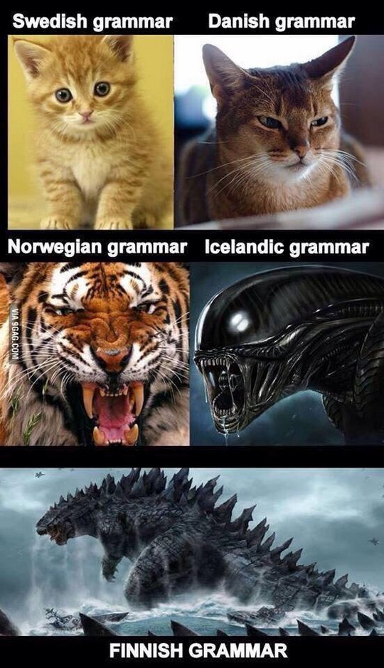 Scandinavian grammar Swedish Danish Norwegian Icelandic Finnish kitten cat tiger alien godzilla