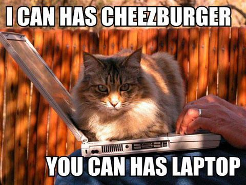 Funny cat meme of I can has Cheezburger you can has laptop
