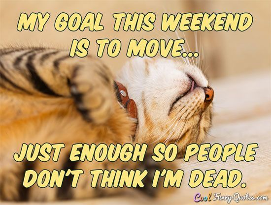 My goal this weekend is to move just enough so people don